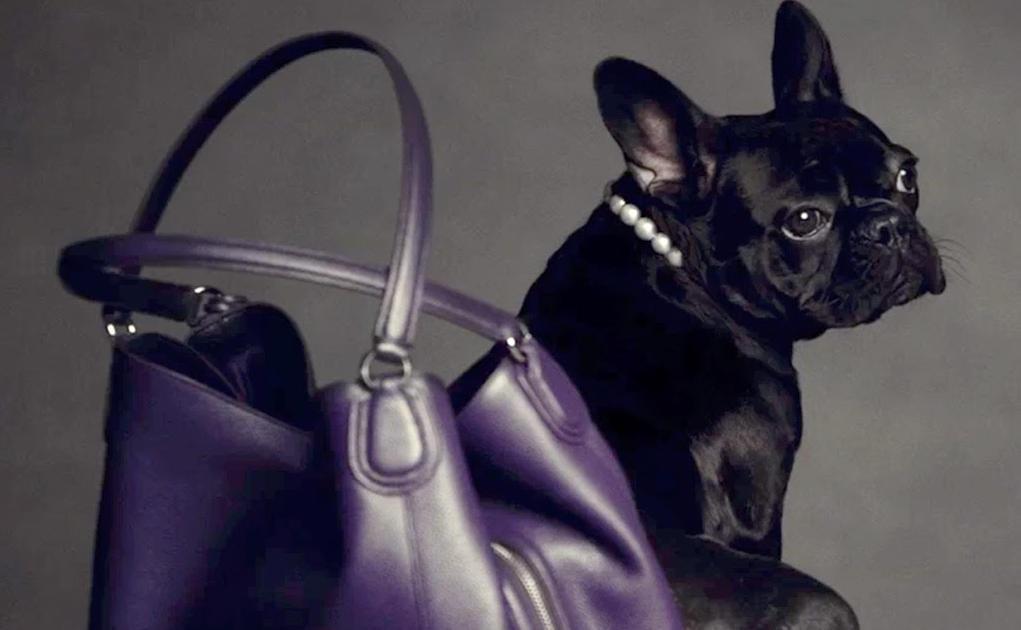 In Beeld: Opvallende modecampagnes voor het nieuwe seizoen